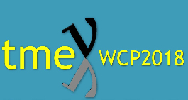 TMEX 2018 WCP: European Workshop on Water Cherenkov Precision Detectors for Neutrino and Nucleon Decay Physics